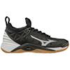 430260 - Mizuno Wave Momentum Women's Shoes